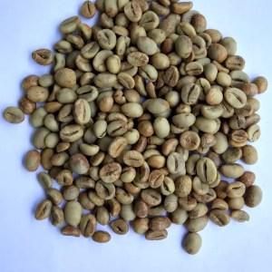 Kopi Robusta Green Bean - Mister Exportir