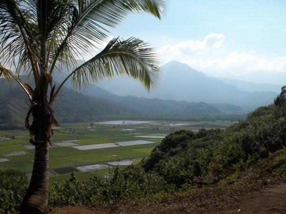 Kaua'i valley