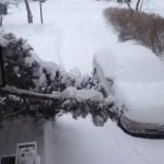 """Tales of Winter Wonder"" snowed out!"