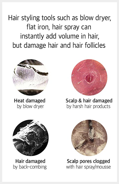 Damaged hair by the styleing tools
