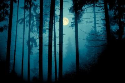 悪夢を見てしまうスピリチュアルな3つの原因!4つの対処法もスピリチュアルな世界に詳しい筆者が解説!