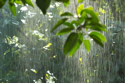 雨のスピリチュアルな7つの意味!引っ越し・結婚式など状況別の6つの意味もヒーリング経験のある筆者が解説