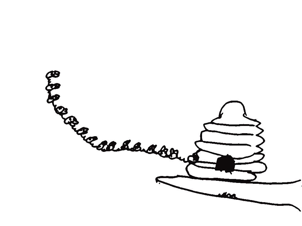 top bar hive diagram