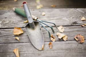 Prepare your home for fall, and leave the cleaning to Misty Clean!