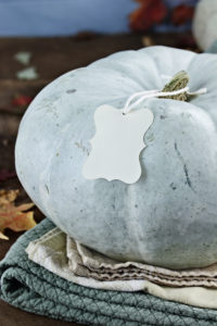 Ready your home for the fall season!