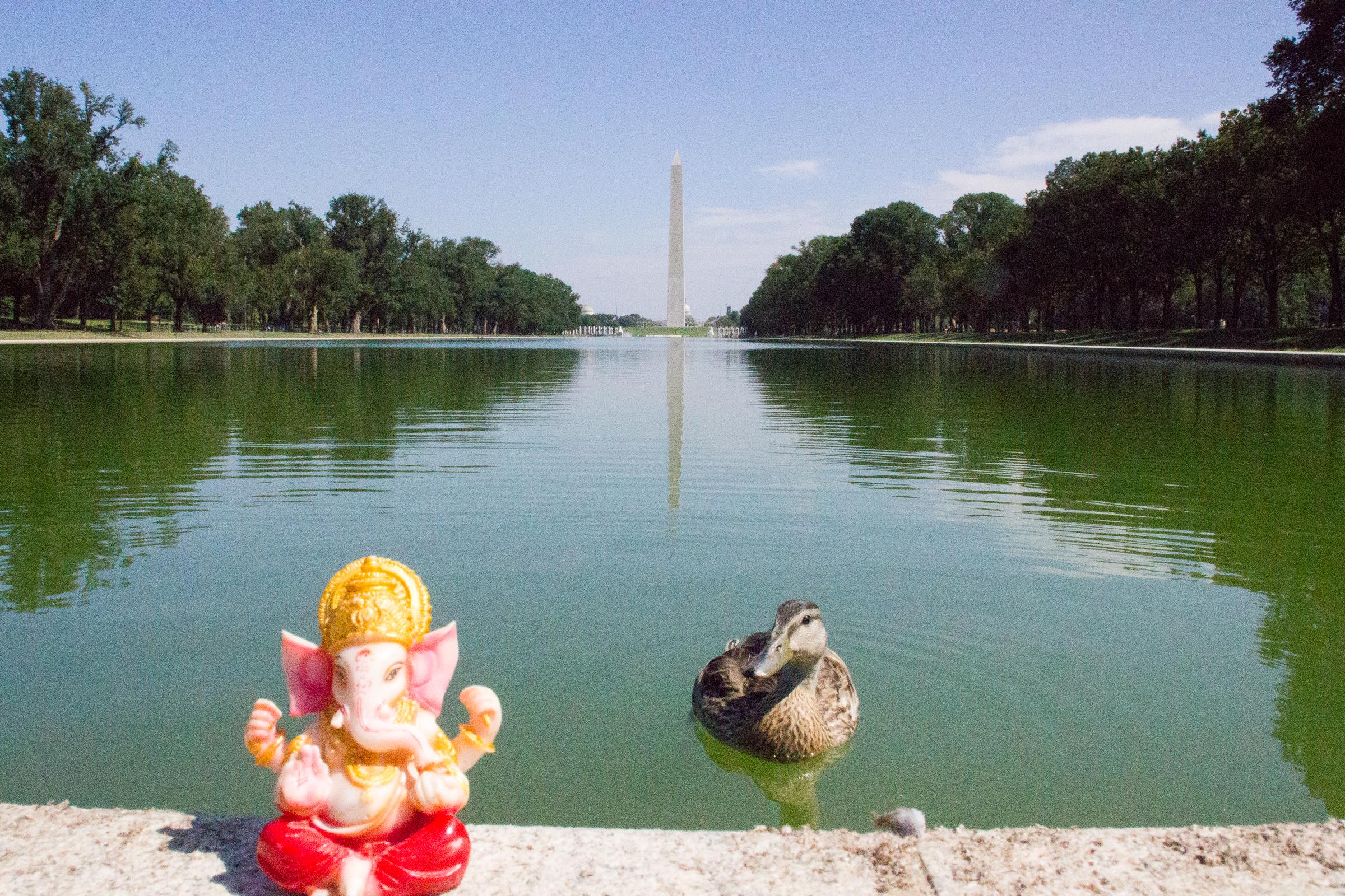 30 Cosas Gratis Que Hacer En Washington D C Parte I