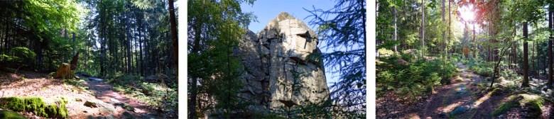 Wald und Felsen auf dem Waldhistorischen Lehrpfad im Naturpark Steinwald