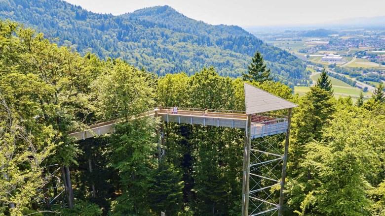 Aussichtsplattform auf dem Baumwipfelpfad Waldkirch im Breisgau