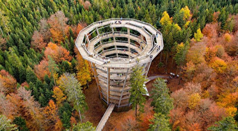 Turm auf dem Baumwipfelpfad Schwarzwald
