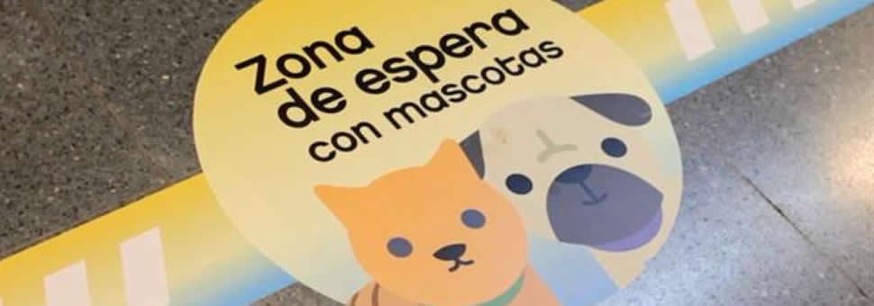 Mascotas en el subte: lo que hay que saber para usar el servicio