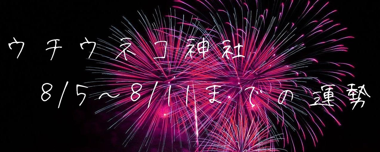 【ウチウネコ神社】8/5~8/11までの運勢
