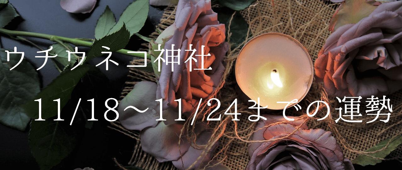 【ウチウネコ神社】11/18~11/24までの運勢