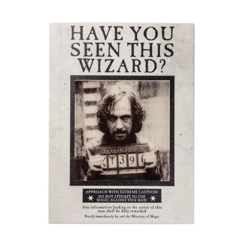 biglietto augurale Lenticolare Have you Seen this Wizard