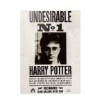 biglietto augurale Lenticolare Undesirable N1 Harry Potter