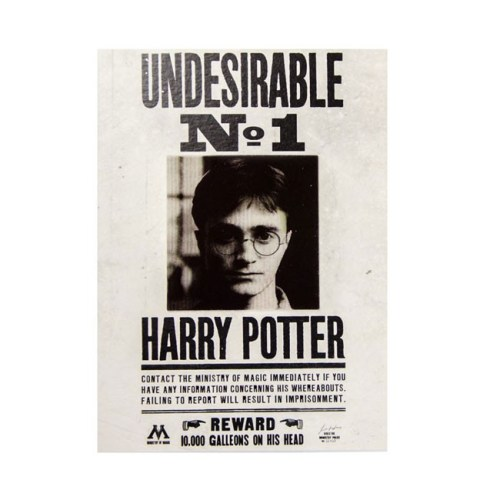 biglietto augurale Lenticolare Undesirable N1 Harry Potter