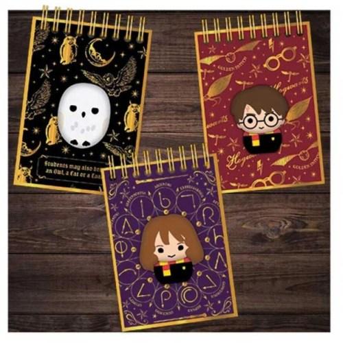 Mini notebook Harry Potter