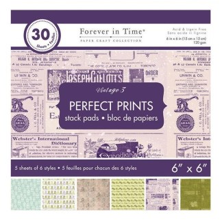 Paper Craft Collections Forever in Time Vintage 3