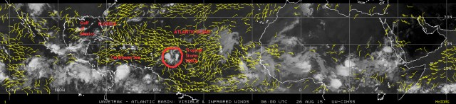 Mosaic of satellite images [NOAA] of 26 August 2015 showing low-level winds across the Atlantic basin. Notice the position of Tropical Storm ERIKA and Florida