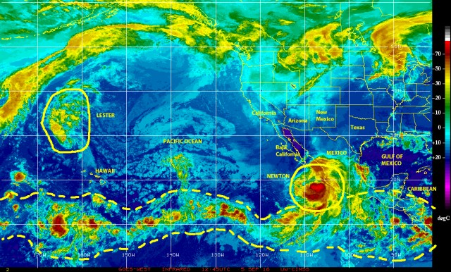 Infrared satellite image of 5 September 2016 showing tropical Storm NEWTON near the Pacific coast of Mexico moving toward  the Baja california Peninsula, while a decaying cyclone LESTER is over central Pacific waters some 2000 kilometers NNW of Hawaii