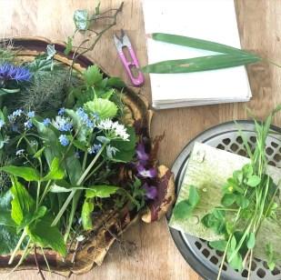 Plantetryk - Skab magi med blomster, blade og papir