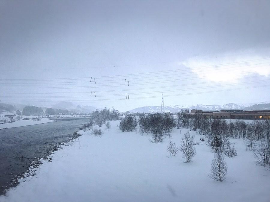 雪が降り積もっています