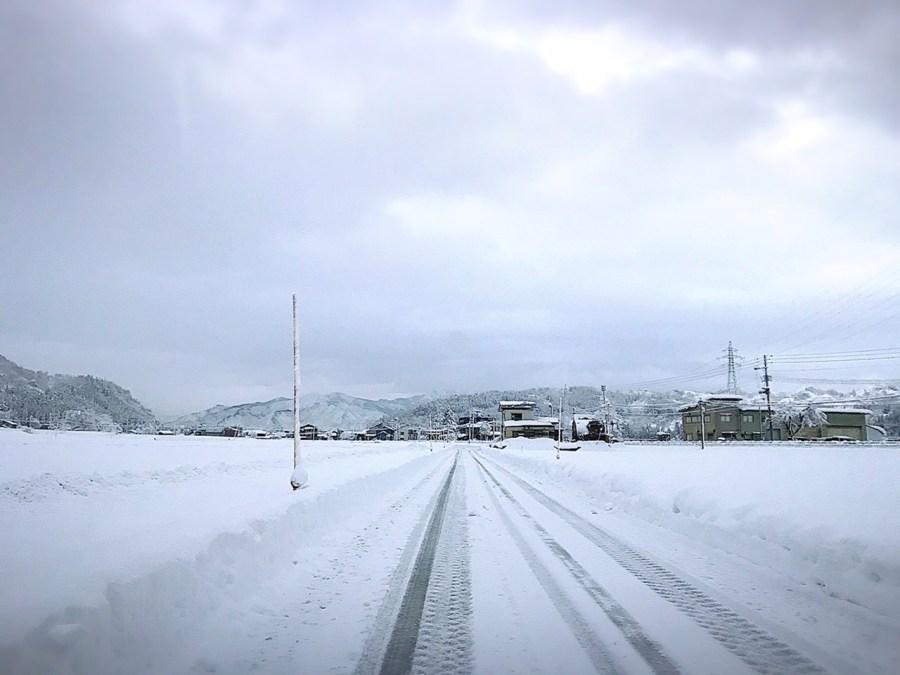 雪も落ち着き曇り空となりました!