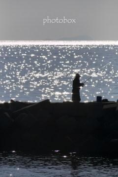 宝石を散りばめたような海が綺麗で夢中でシャッターを切り続けた。