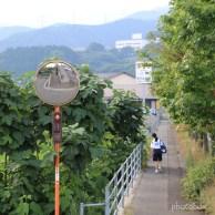 散歩中 登校中 いってらっしゃ~い