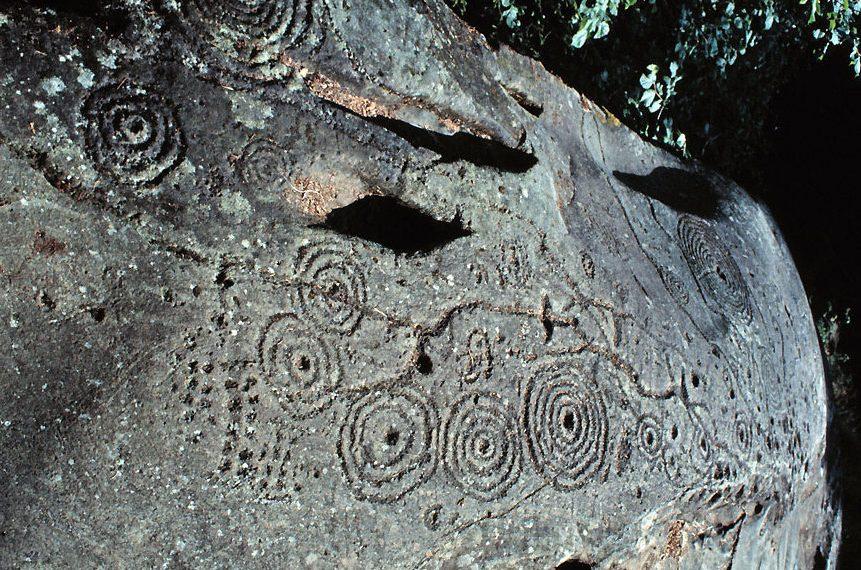 Marca de cazoleta y anillos