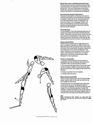 MITPressLog: The Techniques of Springboard Diving