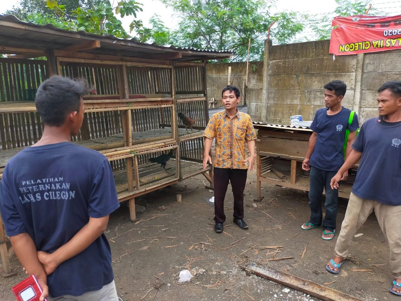 Gambar Tingkatkan Pembinaan Kemandirian, Lapas Cilegon Berikan Pelatihan Peternakan Ayam bagi WBP 17