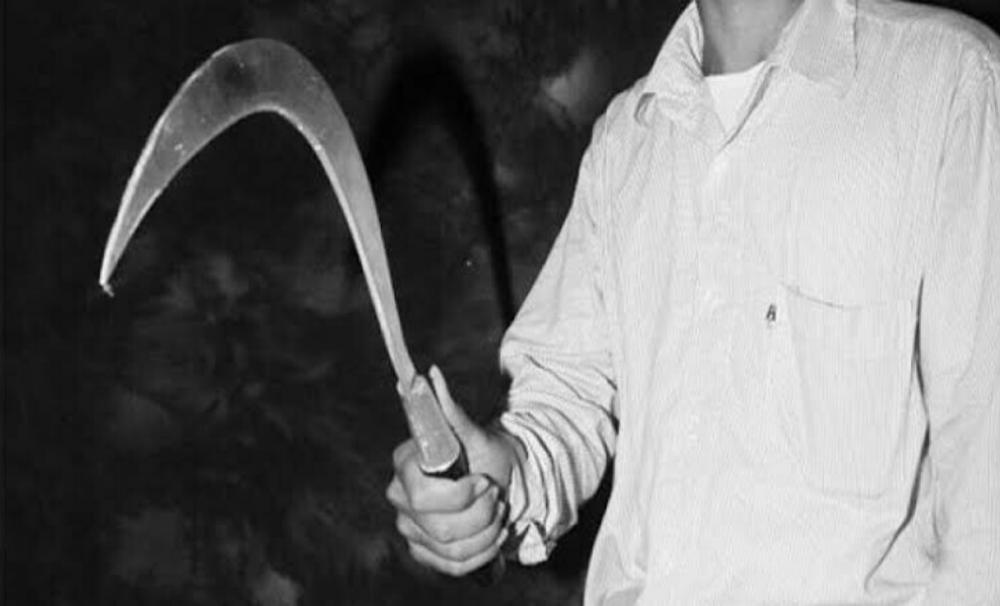 Gambar Waduh, Salah Satu Bacalon Kades Carita Diduga Gunakan Cerulit' Ancam Petugas Village Paradis 15