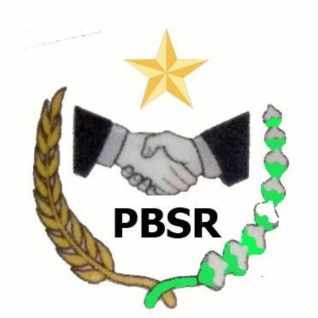 Gambar Sekretaris DPP PBSR Kritik Konsultan Pengawas Berada Diluar Ketika Proyek Tengah Dilaksanakan 13