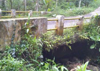 Gambar Kondisi Jambatan penghubung Dua Desa Di Kecamatan Pulosari Kondisinya sangat Memperhatinkan 3