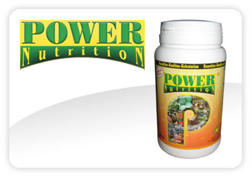 Power Nutrition Mitra Nasa