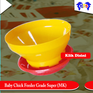 Baby chick feeder Grade Super MK