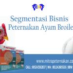 Ketahui Segmentasi Bisnis Peternakan Ayam Broiler