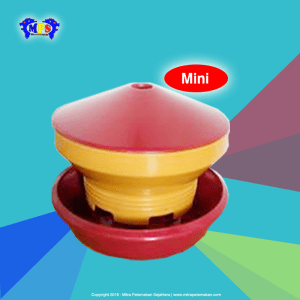 Baby Chick Feeder Mini