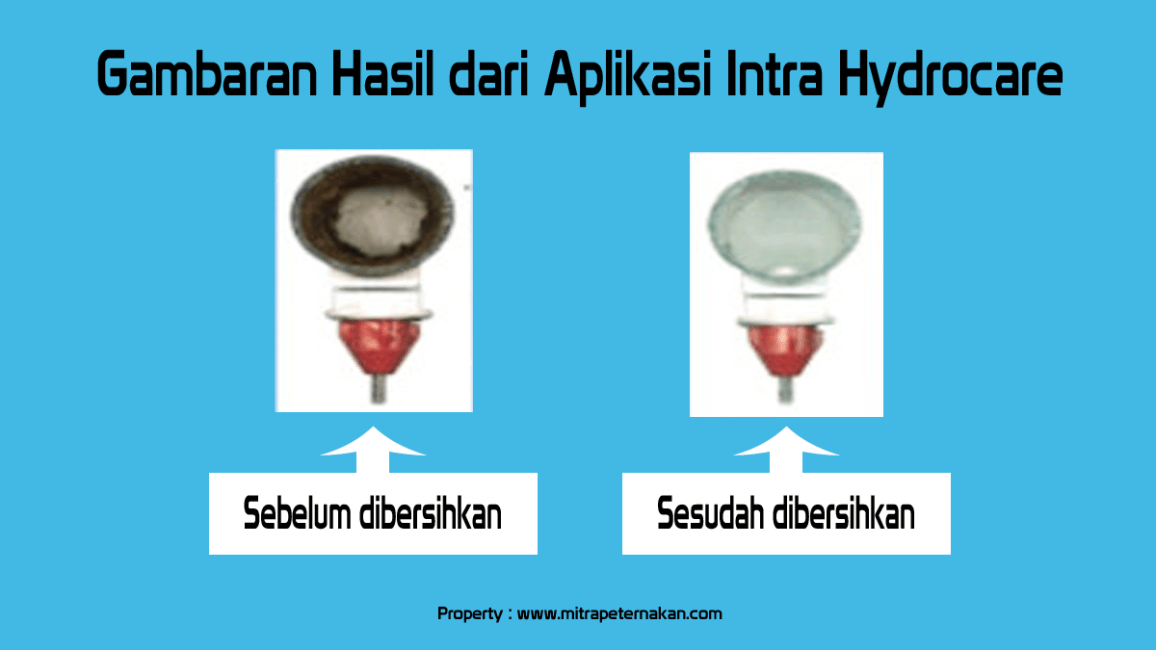 hasil Intra hydrocare