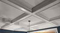 Ceiling Mouldings & Coffers