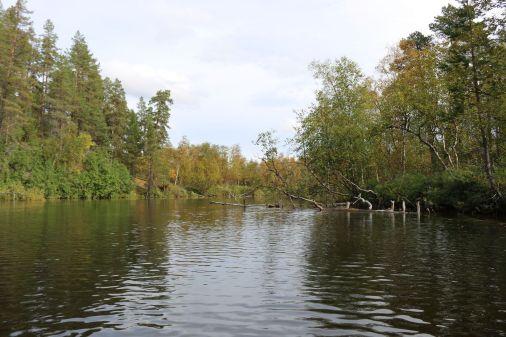 Flußcharakter