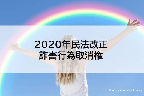 【2020民法改正】詐害行為取消権の要件や行使方法をわかりやすくしてみた【債権総論】