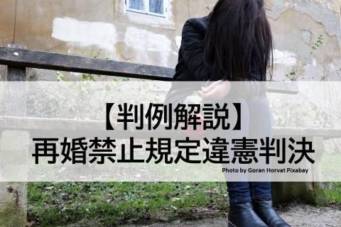 再婚禁止規定違憲判決事件【判例解説】