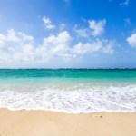 飛行機とホテルの予約をしよう 1歳児と行く子連れ沖縄旅行記