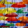 傘が水をはじかない!撥水を復活させて長持ちさせる方法を伝授します