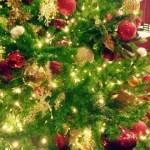 クリスマスツリーの電飾の選び方!長さの目安や白熱球とLEDの違い