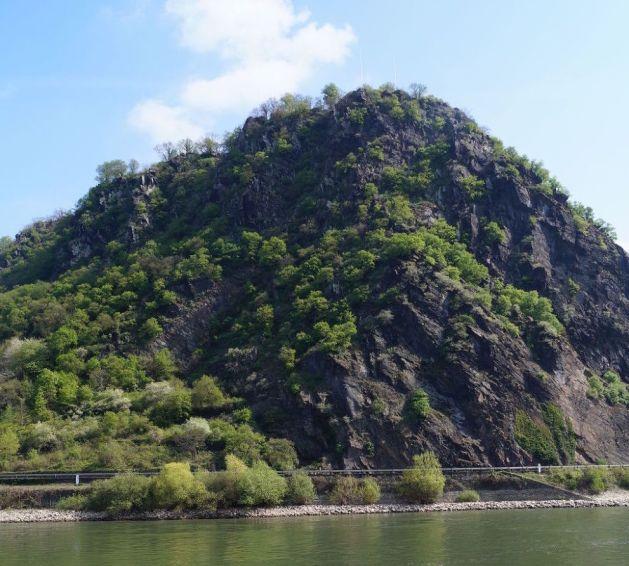 Die Loreley ragt 132 Meter über dem Rhein auf. Foto: Romantischer Rhein Tourismus / I. Klee