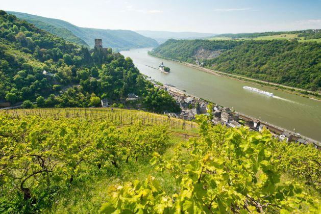 Blick auf Kaub und die Pfalz. Foto: Rheinland-Pfalz Tourismus / Dominik Ketz