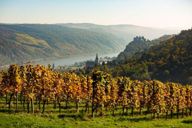 Herbst in Oberwesel. Foto: Romantischer Rhein Tourismus / Henry Tornow.
