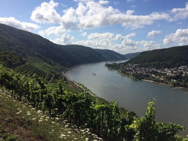 Blick über den Rhein: Trechtingshausen vom Rheinsteig aus gesehen. Foto: Frank Gallas / Romantischer Rhein GmbH